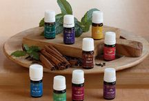 Essential Oils and Young Living / From seed to seal! All you will need to know about your aromatherapy wellness solutions! / by D. Gary Young