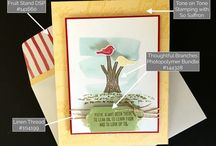 How To's / Key Stampin' Up products that create beautiful cards for all occasions.  Susan Itell, Independent Stampin' Up! Demonstrator www.simplestampin.com