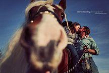 Paparazzi  / by Jennifer Espinosa