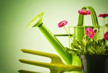 Fleurs et jardinage / by Selection Reader's Digest