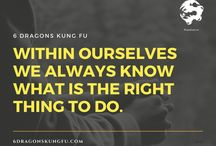 6 Dragons Kung Fu's Philosophy