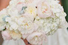 Menyasszonyi és egyéb csokrok // Bridal and other bouquet / A legszebb, legextrémebb, legszokatlanabb menyasszonyi csokrok. // #beautiful #extreme #bride #bridal #bouquet #wedding