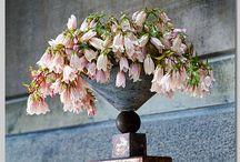 vackra blomster / vackert