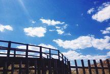 #Liveyourpark #Ecovacanze / Trascorri una ecovacanza nel Parco delle Dune Costiere!