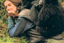 Dian Fossey and the Gorillas!