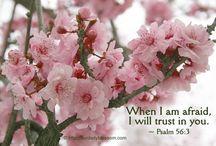 Scripture - statements