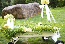 wedding wagon