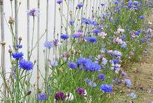 Garden natural