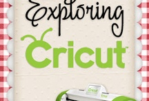 Cricut and Silouette / by Desiree Tolle Forwoodson