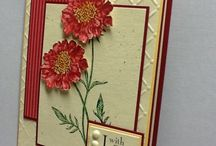 Field Flowers - Stampin' Up (retired) / by Diana Crawford