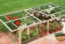 Cold Frames and Mini Greenhouses