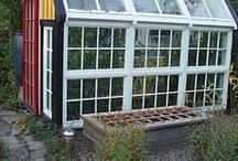 Greenhouses / by Minna Jackson