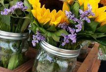 Sunflower Yellow Love