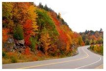 Ontario / Fall / by Kerri Hayward