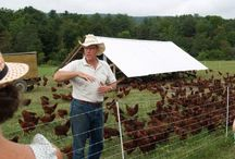 Homestead Ideas for the Future / Ecological, sustainable farming producing only the best of the best: future dream