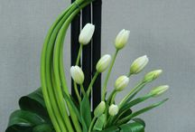 Corporate flowers / Flowers for the office, hotel and commercial environment.