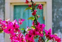 Corfu, GR