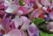 Fiori commestibili e ricette / Meravigliosi colori e sapori da usare