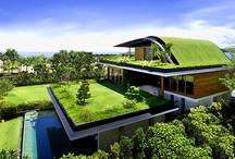 Ecohousing