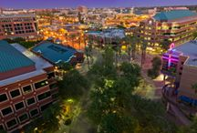 Mill Avenue / Tempe's famed Mill Avenue is home to some of the best local restaurants and bars in the country.