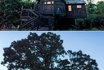 Honeymoon Suite Tree House / This is our new Honeymoon Suite Tree House