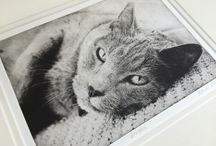 Handmade Pet Etchings From Client's Photo