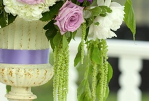ideas for purple and green wedding / by Sophisticated Floral Designs