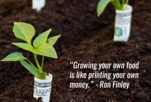Garden Quotes / Our favorite garden quotes!
