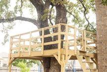 Casas de árbol