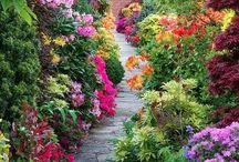 Virágzó kertek