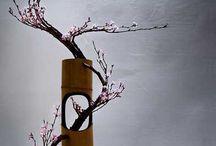Ikebana / by Hiroaki N