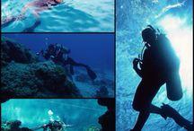 Dive / #diving #scuba