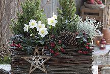 Weihnachtsdeko-Eingang