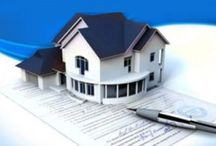Asset Protection Articles
