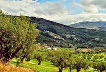 Cleto, Cosenza, Calabria / Cleto, Cosenza, Calabria