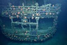 spooky underwater