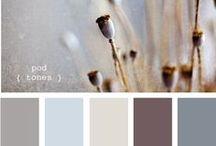Color combinatio