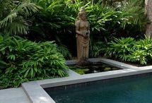 Pool Garden Design