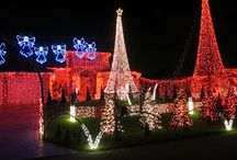 South Florida Holidays / by Fillaseat South Florida
