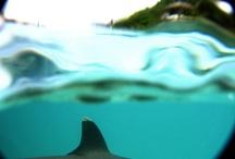 underwaterStuff