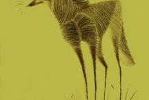 Lobo guará