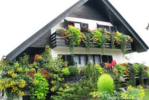 Balcony Garden / Very well use of space to create a 'green' and impressive balcony.