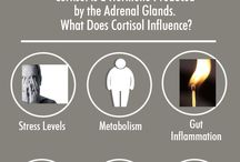Health - Diseases | Adrenal Problems / Problems, Info, Fixes, Help for Adrenal Health Issues