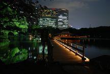 T o k y o / / C h u o / 中央 / Hama Rikyu Garden