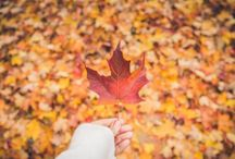 Autumn NZ