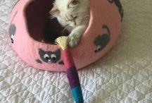 Cat toys - hračky pro kočky
