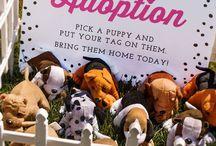 puppy ideas