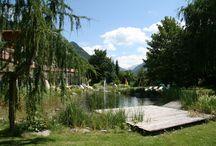 Impressionen Hotel Gallhaus Frühling / Impressionen Hotel Gallhaus, Südtirol -  Frühling im Ahrntal.