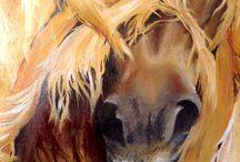 horses and ponys