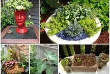 My Container Gardens / A board of Container Gardens created by Cathy Testa of ContainerCrazyCT in Connecticut. Enjoy! #containergardens #containergardening #patiopots
